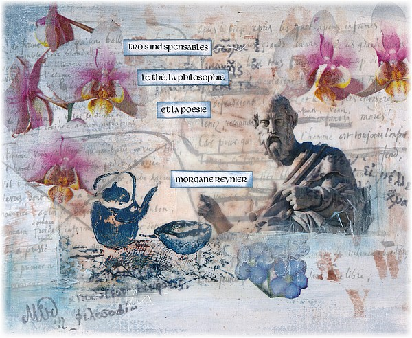 Haïkus, illustrations du mois de mai, par Miryl