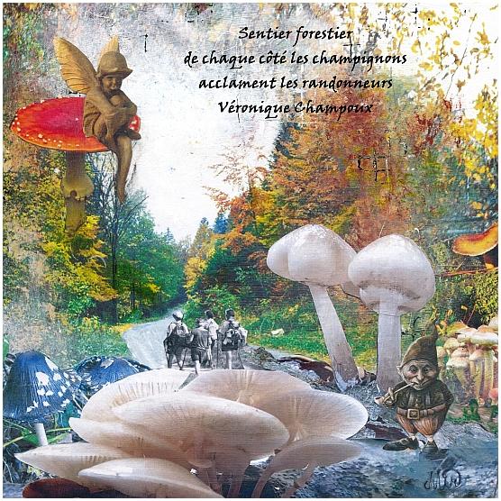 Brouillard pluie champignons et...haïkus, illustration collage peinture, Miryl, 2020